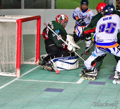 Proche du but - Hockey - Boyard - Olivier